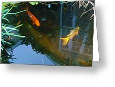 Koi - Oil Painting Effect Greeting Card