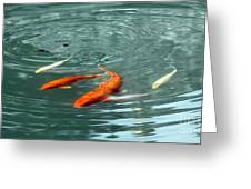 Koi With Sky Reflection Greeting Card