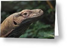 Komodo-7399 Greeting Card