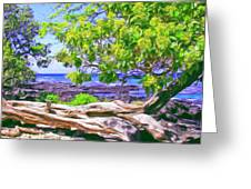 Kona Coast Greeting Card