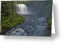 Koosah Falls Greeting Card