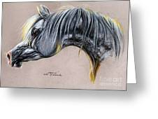 Kordelas Polish Arabian Horse Soft Pastel Greeting Card