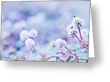 Kula White Greeting Card