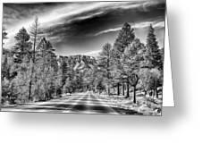 Kyle Canyon Road Greeting Card