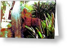 La Cascade  Greeting Card