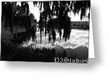La Chua Trail Greeting Card