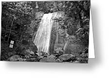 La Coca Falls El Yunque National Rainforest Puerto Rico Print Black And White Greeting Card