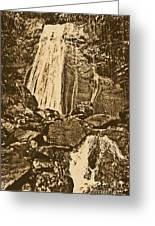 La Coca Falls El Yunque National Rainforest Puerto Rico Prints Rustic Greeting Card by Shawn O'Brien