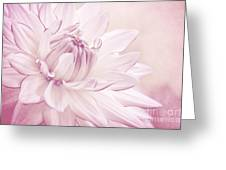 La Dahlia Greeting Card by Angela Doelling AD DESIGN Photo and PhotoArt