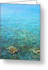 La Perouse Water Greeting Card