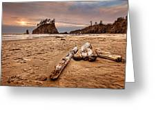 La Push Greeting Card