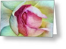 La Vie En Rose Greeting Card