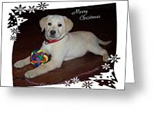 Lab Pup Merry Christmas Greeting Card