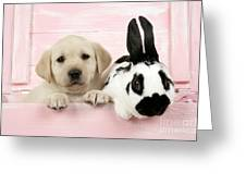 Lab Puppy And Bunny Greeting Card