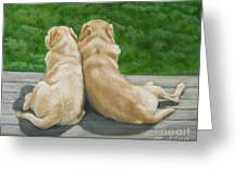 Labrador Lazy Afternoon Greeting Card