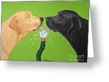 Labs Like To Share 2 Greeting Card