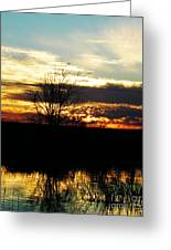 Lacassine Painted Sunset Greeting Card
