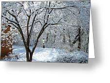 Lacy Snowfall Greeting Card