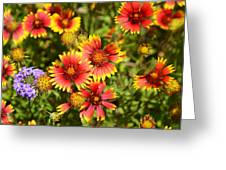 Lady Bird And Her Flowers Greeting Card