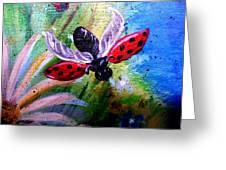 Lady Bug Landing Greeting Card