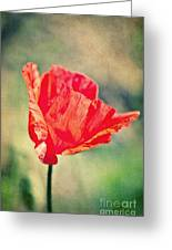 Lady In Red Greeting Card by Angela Doelling AD DESIGN Photo and PhotoArt