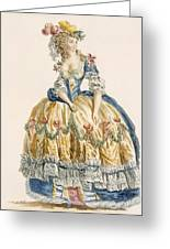 Ladys Elaborate Ball Gown, Engraved Greeting Card