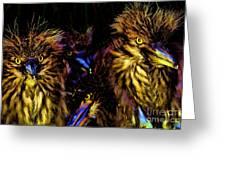 Lago Titicaca Birds Greeting Card