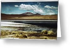 Lagoon Grass Bolivia Vintage Greeting Card