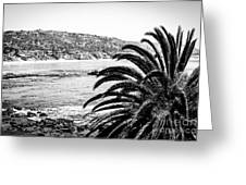 Laguna Beach California In Black And White Greeting Card