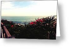 Laguna Beach Seascape Greeting Card