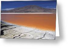 Laguna Colorada, Altiplano Bolivia Greeting Card