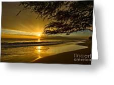 Lahaina Sun Burst Greeting Card