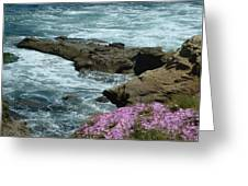 Lajolla Shore Greeting Card