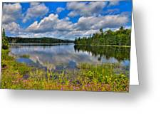 Lake Abanakee In Indian Lake New York Greeting Card by David Patterson