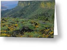 1a5801-e-lake Abert And Abert Rim V Greeting Card