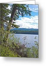 Lake Alva From National Forest Campground Site-yt Greeting Card