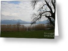 Lake And Mountains Greeting Card