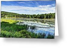 Lake At Acadia National Park Greeting Card