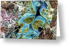 Lake Carnegie Western Australia Greeting Card by Adam Romanowicz