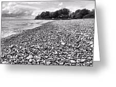 Lake Erie Coast Black And White Greeting Card