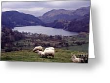 Lake Gwynant Snowdonia Wales Greeting Card