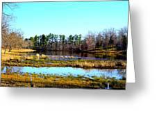Lake Helen Lee Greeting Card