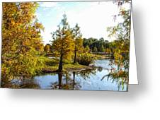 Lake Howard - Fall Color In The Park Greeting Card