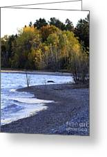Lake Huron Shoreline In The Fall  Greeting Card