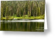 Lake In Mt Rainer National Park Greeting Card