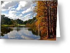 Lake Lancaster Greeting Card by Denise Mazzocco