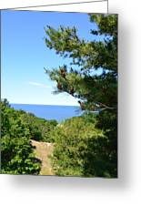 Lake Michigan From The Top Of The Dune Greeting Card
