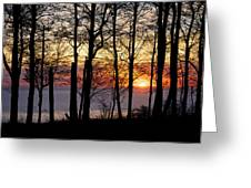 Lake Michigan Sunset With Silhouetted Trees Greeting Card