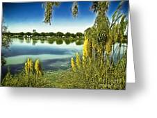 Lake Mindon Campground California Greeting Card by Bob and Nadine Johnston