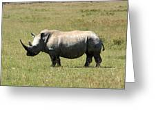 Lake Nakuru White Rhino Greeting Card